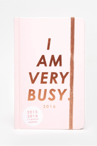 my diary is falling to pieces and I have diary OCD so this 17 month one would be perfect! time is money guys!